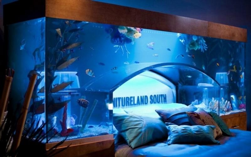 didelis akvariumas