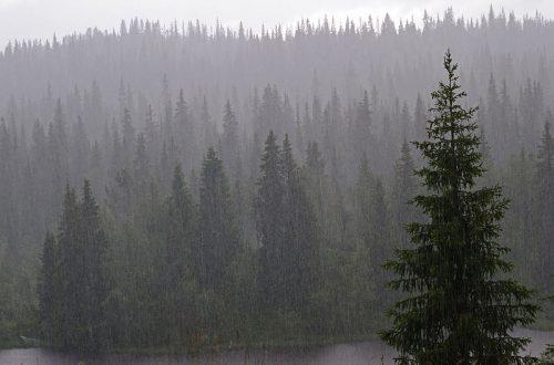 Orai Norvegijoje